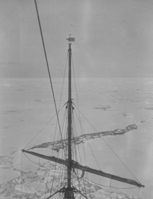 Photograph: Terra Nova in the Pack