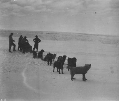Photograph: Four Men with a Sled and Dogs
