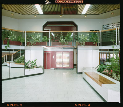 Negative: Amuri Courts Interior