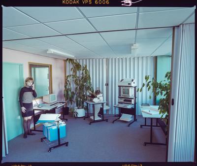 Negative: Woman In Dixon Boanas Office