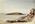 Painting: Birnbeck Island Weston Super Mare, June 1837