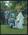 Negative: Clarke-Eade Wedding