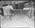 Film negative: International Harvester Company: fertiliser