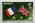 Stamp: Jersey Nine Pence