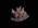 Glass Model Invertebrate: Phallusia pustulosa