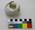 Partial Egg: Snares Crested Penguin