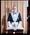 Negative: Mr A. Walter Freemason Portrait