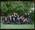 Negative: Twenty-One Girls Acland House CGHS 1990