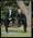 Negative: Rutherford-Tubman Wedding