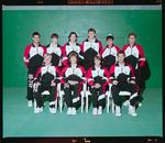 Negative: Canterbury Tennis Team 1992