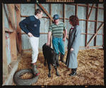 Negative: Moir Dairy Farm