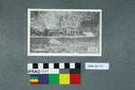 Postcard: Welton Woods