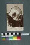 Postcard: Le Complice