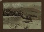 Painting: Hay's Bush