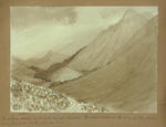 Painting: Birchwood station on Mr Watts Russell's sheep run