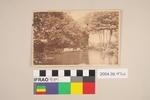 Postcard of a pond