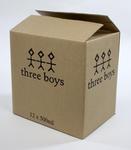 Aftershock Beer Box: Three Boys Brewery