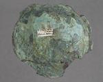 Bronze: fragment