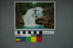 Postcard of Bald River Falls
