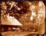 Glass Plate Negative: John Cracroft Wilson's House