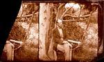 Glass Plate Negative Stereograph Slide: James Edward FitzGerald