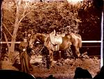 Glass Plate Negative: Elizabeth Barker with her Horse