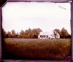 Glass Plate Negative: Milford, Canterbury