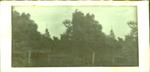 Glass Plate Positive Stereograph Slide: Provincial Council Chambers Building