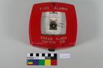 Vigilant automatic fire alarm
