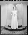 Film negative: Miss Noldus