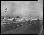 Film negative: Mr Noel Park, car yard