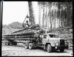 Film negative: International Harvester Company: truck loading logs