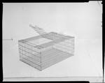Film negative: CCD Poultry Supplies, chook transport cage