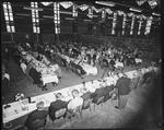 Film negative: New Zealand Royal Engineers, sappers reunion dinner