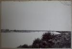 Photograph: White's Bridge, Waimakariri 1865