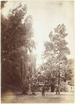 Photograph: Four People in Dr A C Barker's Garden