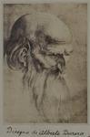 Photograph: Elder by Albrecht Dürer, Print
