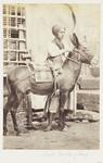 Photograph: Boy with His Donkey, Cairo