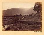 Photograph: Wairoa