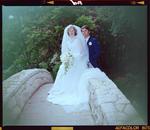 Negative: Tovey-Cox Wedding