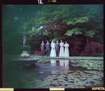 Negative: Hill-Van Zandvliet Wedding