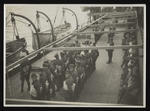 Photograph: Wilding Gallipoli