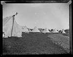 Glass Plate Negative: Canterbury Yeomanry Cavalry Volunteers