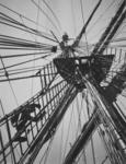 Photograph: Crows' Nest