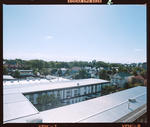 Negative: Amuri Courts Rooftops